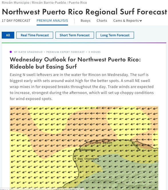 Premium_Northwest_Puerto_Rico_Weather_Forecast_for_Storms__Swell___Surf_in_January_1970_-_Surfline.jpg